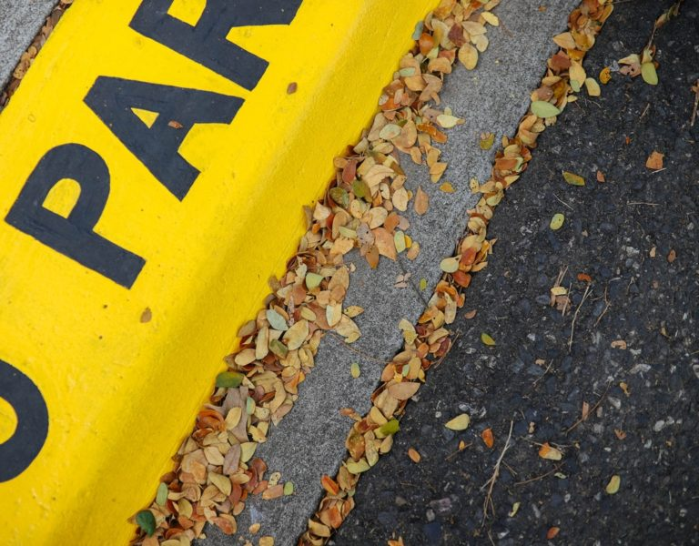 Zakaz postoju, czyli jak parkować zgodnie z przepisami